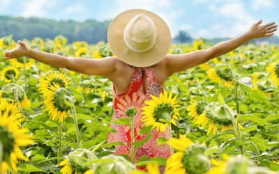 Hvordan skal din sommer være i år?